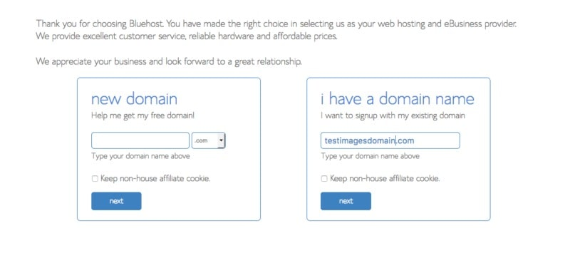 How to Start a Travel Blog - Setting up hosting with Bluehost - Step 3 - Domain