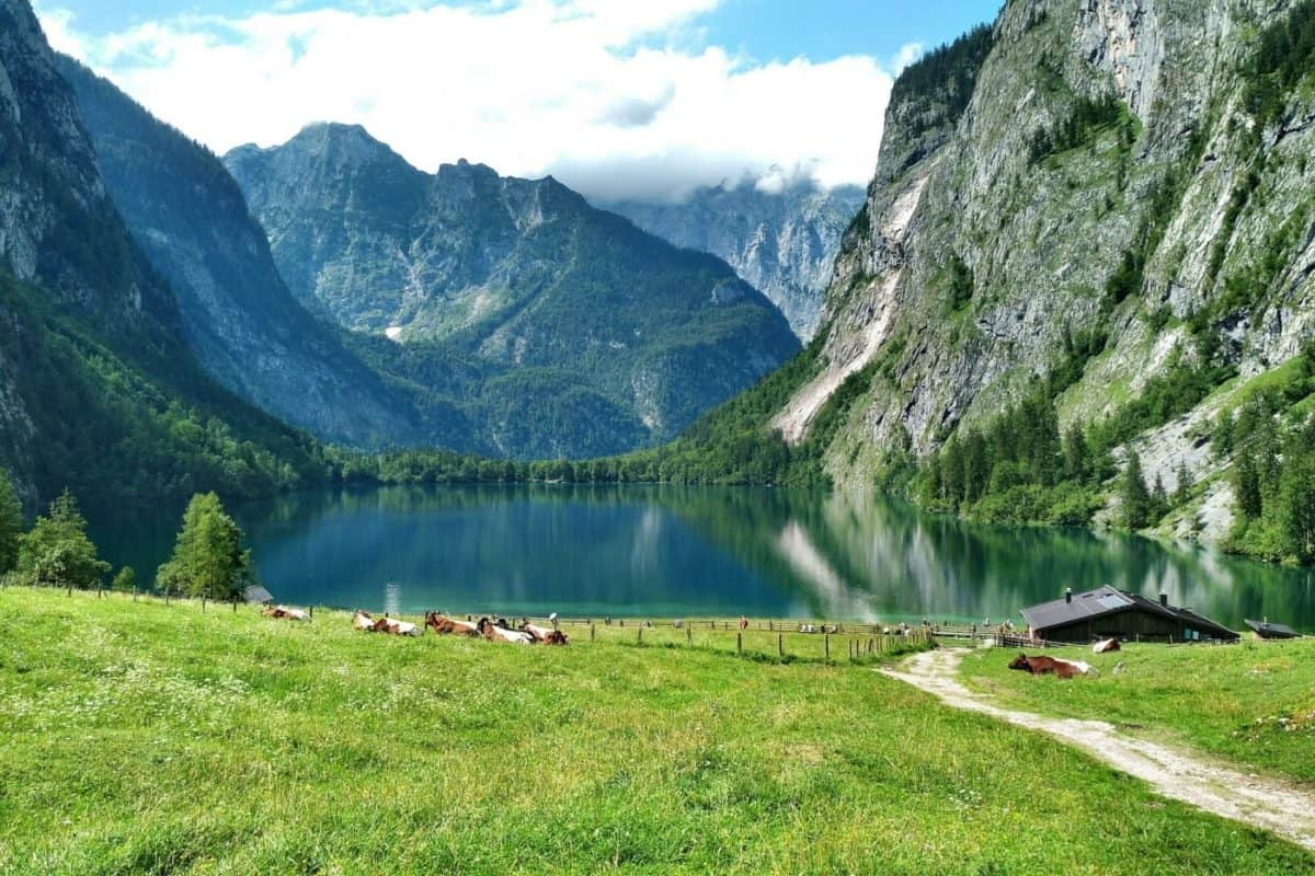 Obersee, Germany, a hidden Gem in Germany
