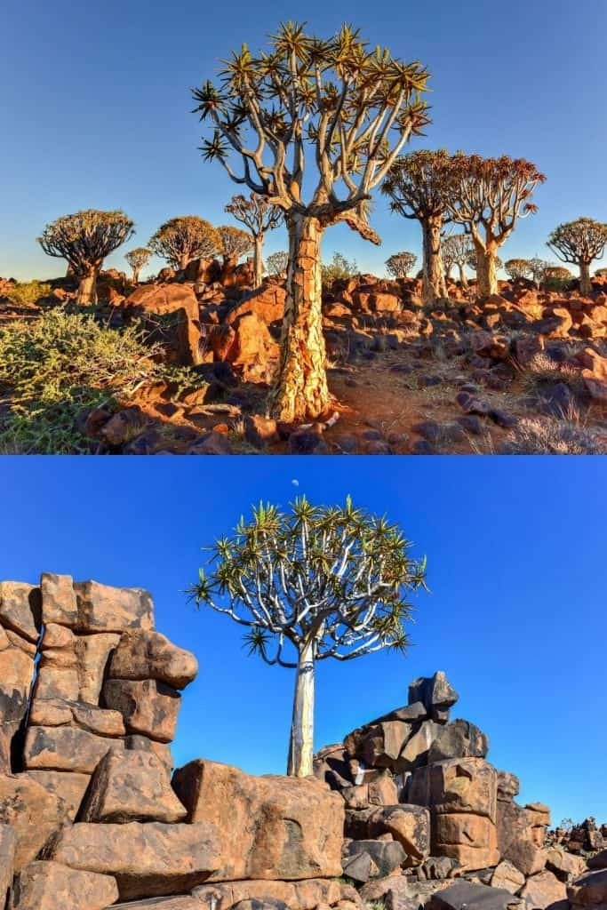 Best Places in Namibia