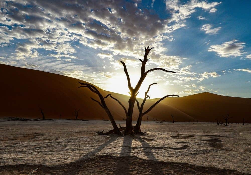 Best Places in Namibia - Deadvlei